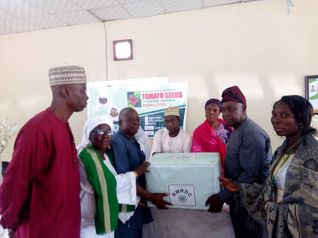 RMRDC distributes improved tomato seeds to Kwara farmers